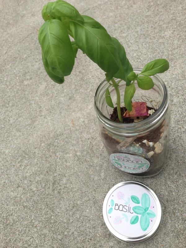 Herban Garden2